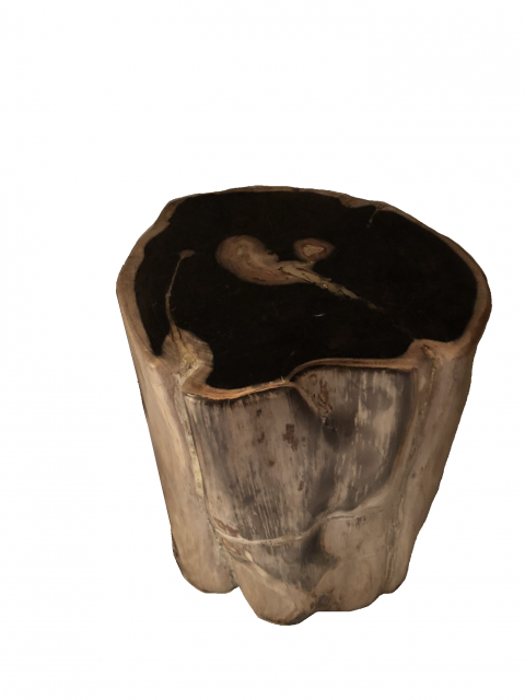 Créaterus d'ambiances fossil stool